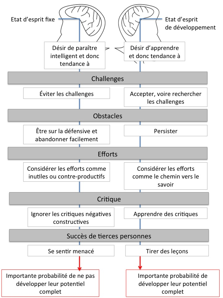 Etats d'esprit fixe vs. état d'esprit de développement